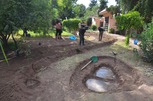 Mettre de l'eau et laisser pénétrer pour ramolir la terre et faciliter le creusement....