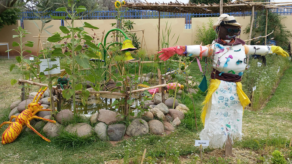 Bassin permaculture ecole
