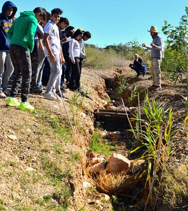 Découverte des mini-gabions pour ralentir l'eau et lutter contre l'érosion du talweg...