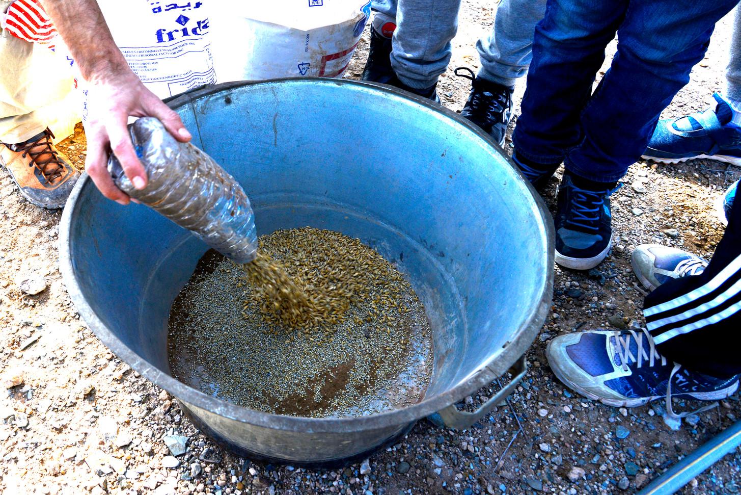 """Préparation de """"Seed Balls"""" (balle de graines pour semer naturellement)..."""