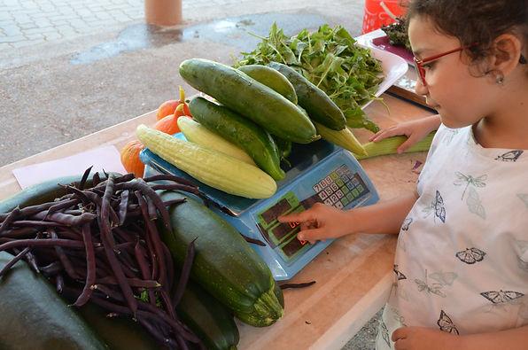 education permaculture, labellisation E3D programe EDD, jardin école, réalisation de jardin dans une école, autonomie alimentaire, fabien tournan, regeneration vegetale