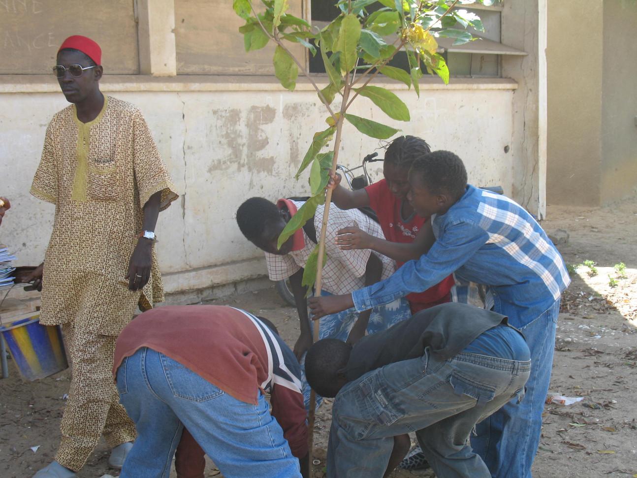 plantaion des élèves...