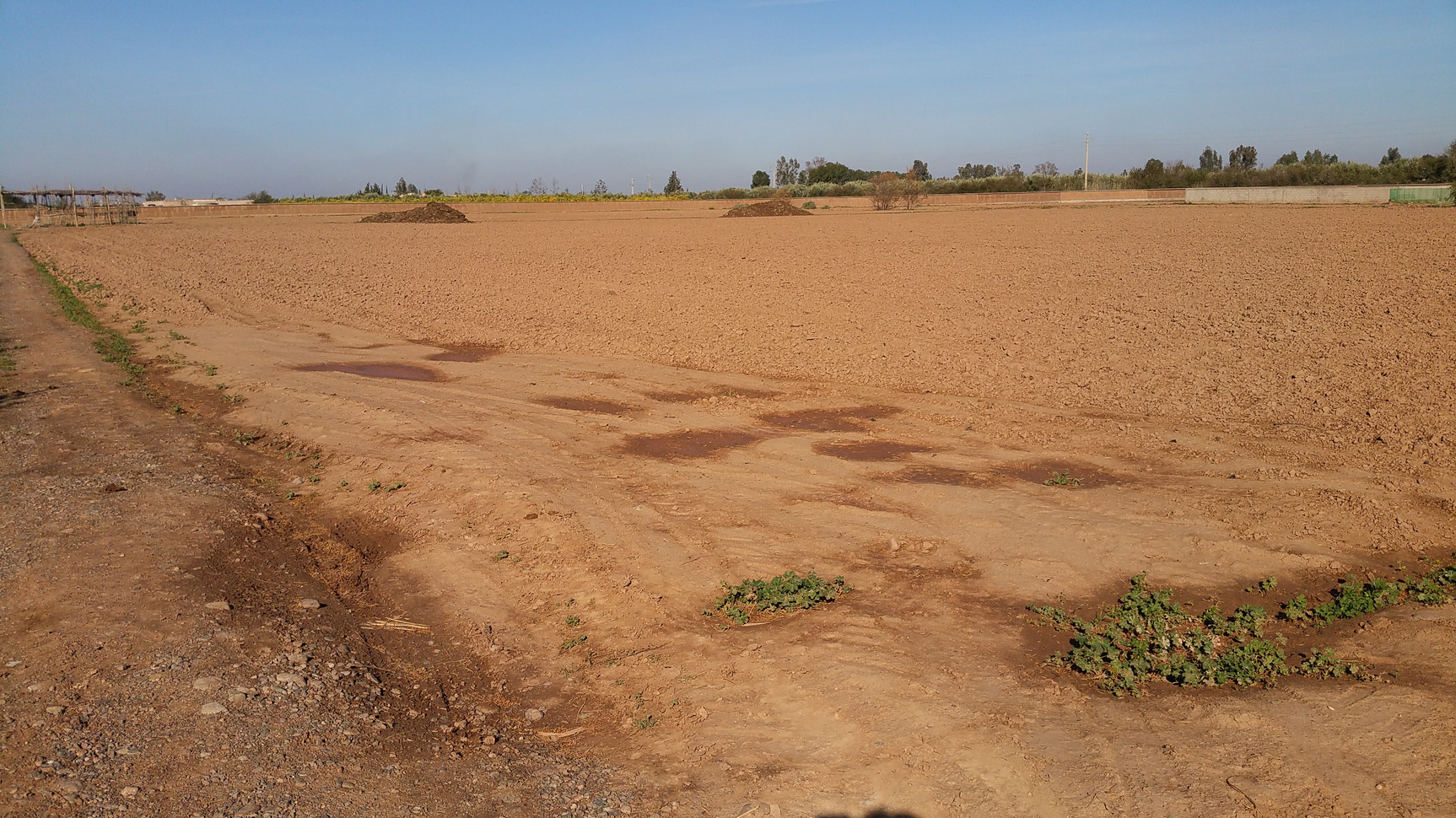 Terrain nu désertique, Marrakech, 250mm de pluie annuel...