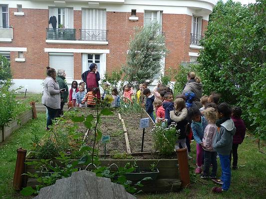 formation pour les enseignants aux E3D EDD, transition écologique, écocitoyenneté , Education permaculture dans les écoles, autonomie alimentaire, regeneration des sols, jardin en plein désert, fabien tournan, regeneration des sols, regeneration vegetale, autonomie alimentaire, jardin partagés, brigades vertes