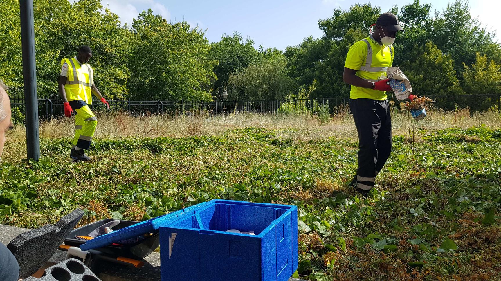 Nettoyage du dépot d'ordure au pied des batiments et analyse des sols pour les pollutions à l'amiante...