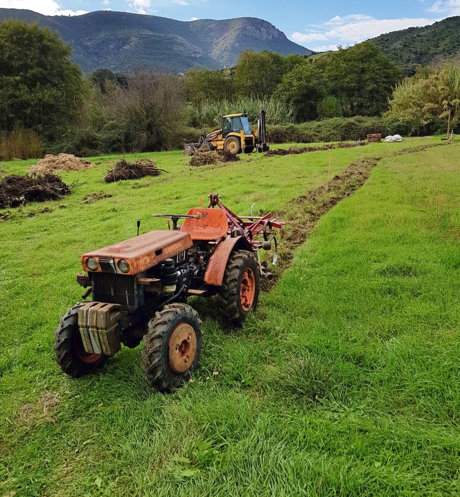 Tracteur 14 ch avec outils griffe.....