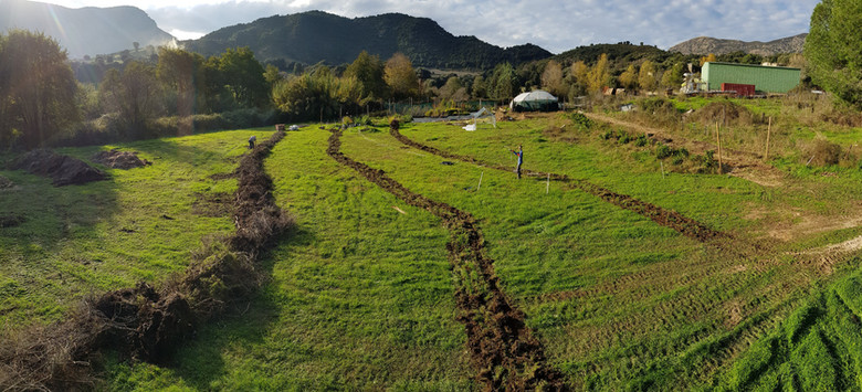 Positionnement de l'Agroforesterie...