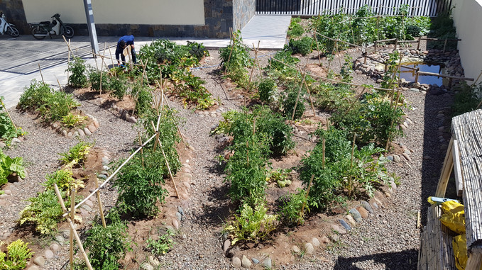 Jardin pédagogique école Montessori, en fonction...