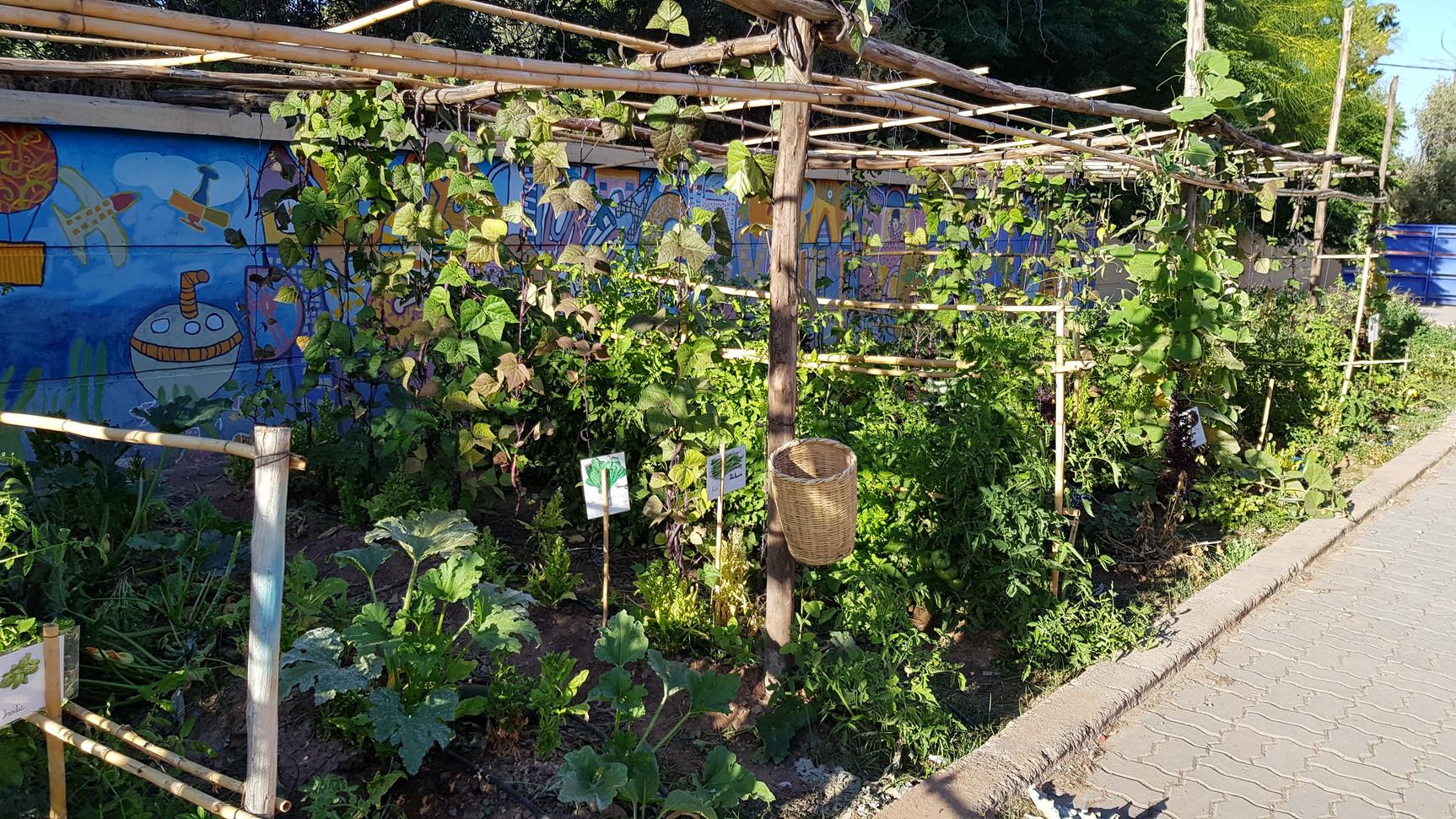 Jardin n°2 majorelle, en fonction...