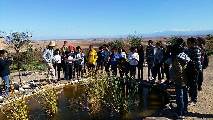 regeneration vegetale, formation pour les enseignants aux E3D EDD, transition écologique, écocitoyenneté  Education, permaculture dans les écoles, autonomie alimentaire, regeneration des sols, jardin en plein désert, fabien tournan, regeneration des sols, regeneration vegetale, autonomie alimentaire