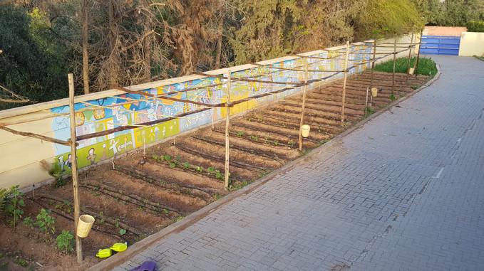 Jardin n°2 majorelle, implantation...