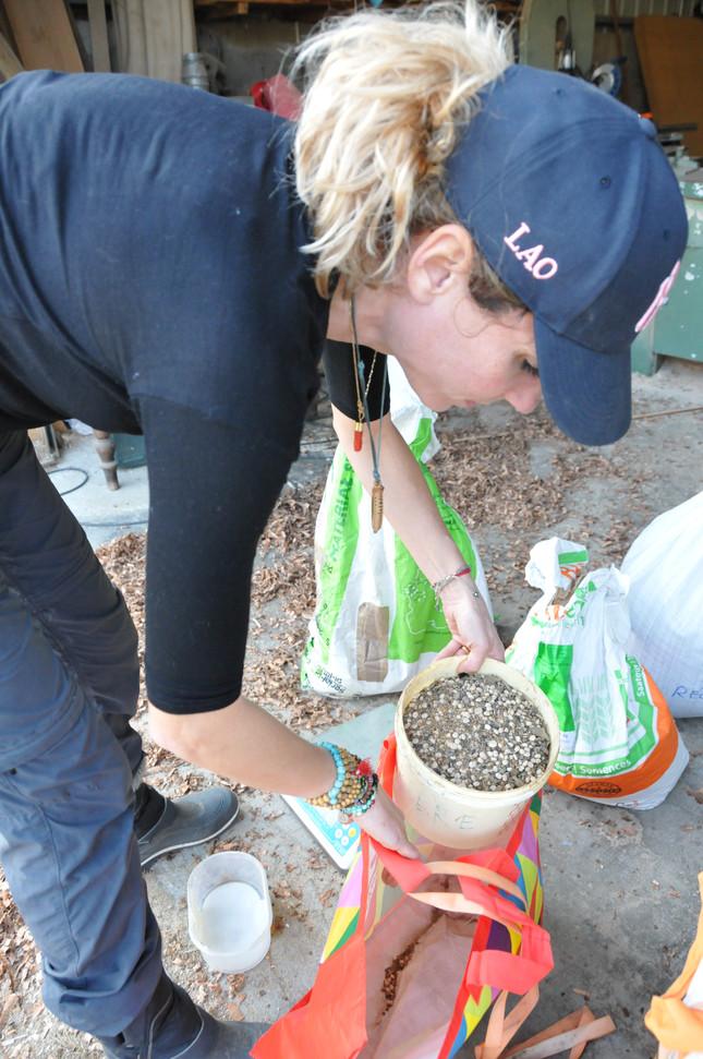 Préparation des semences...