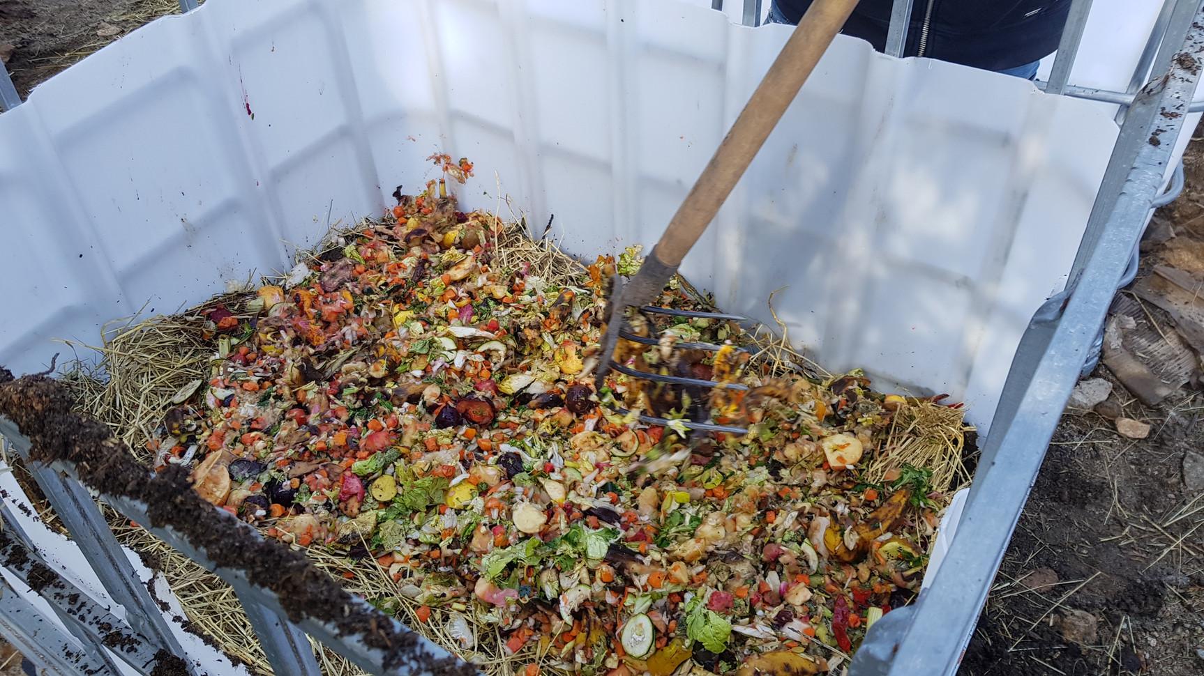 Recyclage des dechets de super marché par les vers de terre...