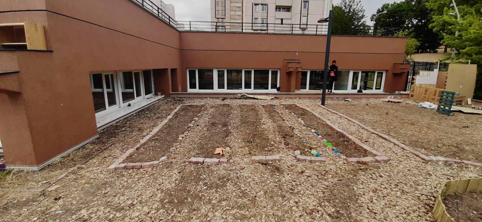 regeneration des sols engrais vert
