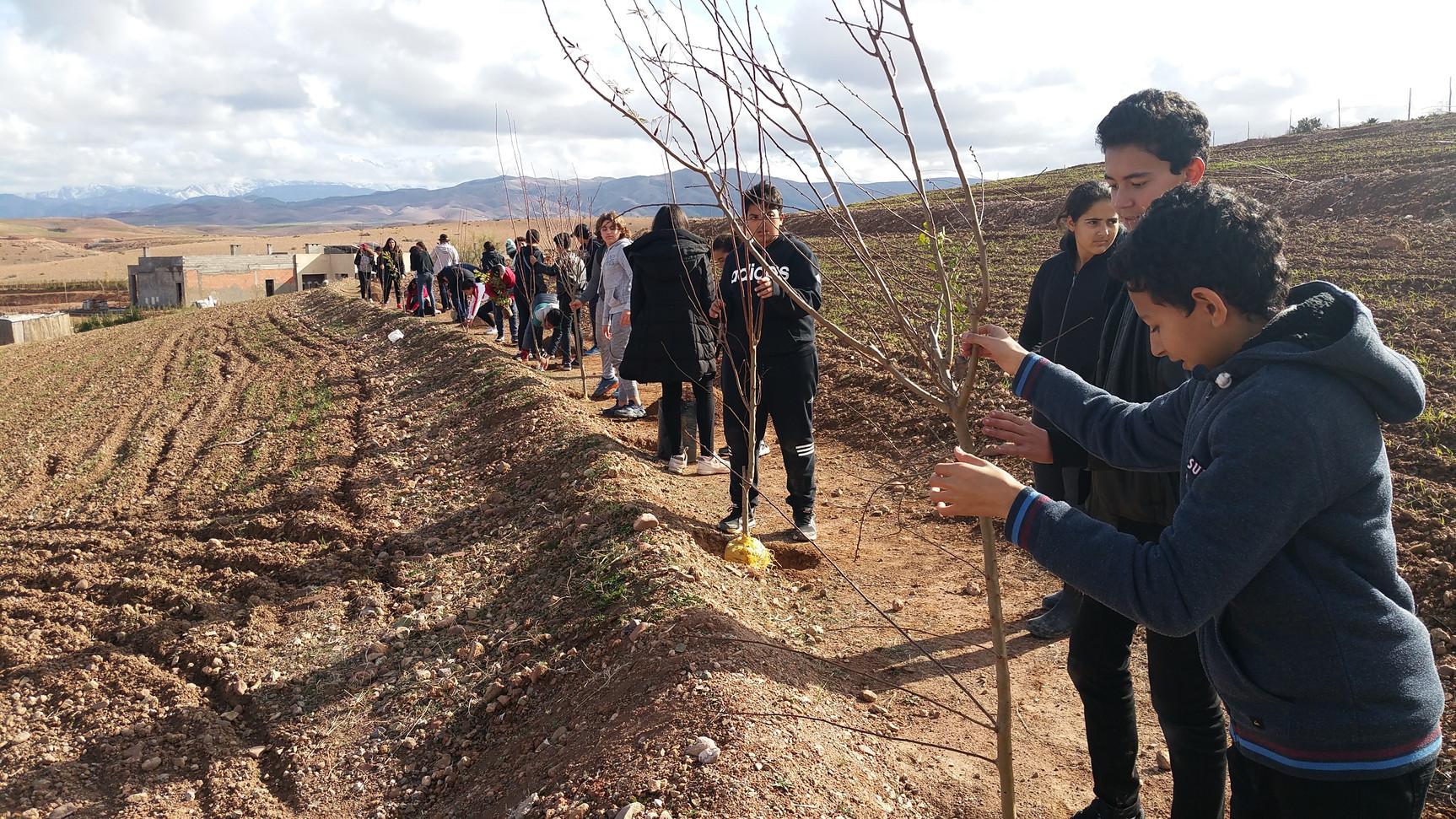 Plantation des arbres fruitiers...