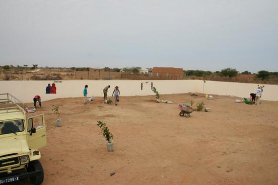 Photo Plantation Mpal (101).jpg