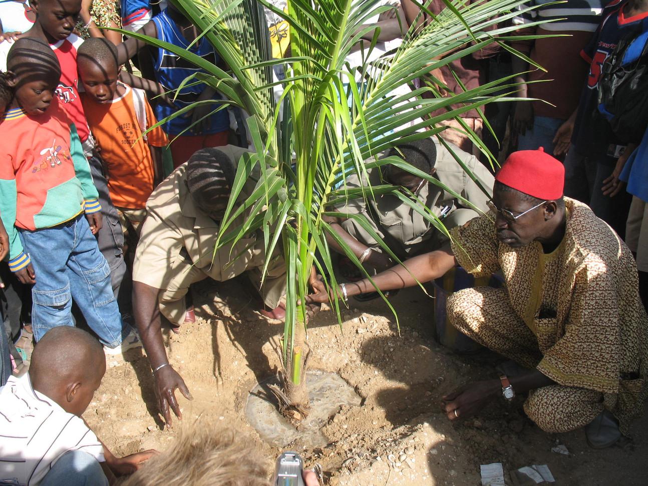 Plantation avec le maire de Kalolac.....