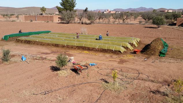 Lancement de 200m3 de compost pour lancer une ferme en zone désertique