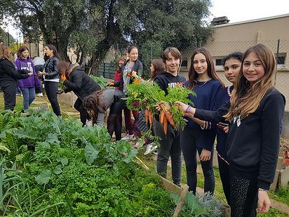 EDD, E3D, permaculture dans les école, formation edd/e3d au enseignant, autonomie alimentaire, regeneration des sols, fabien tournan, regeneration vegetale