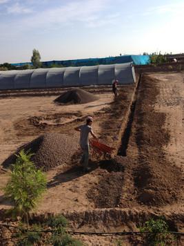 Remplissage des drains avec de gros graviers...