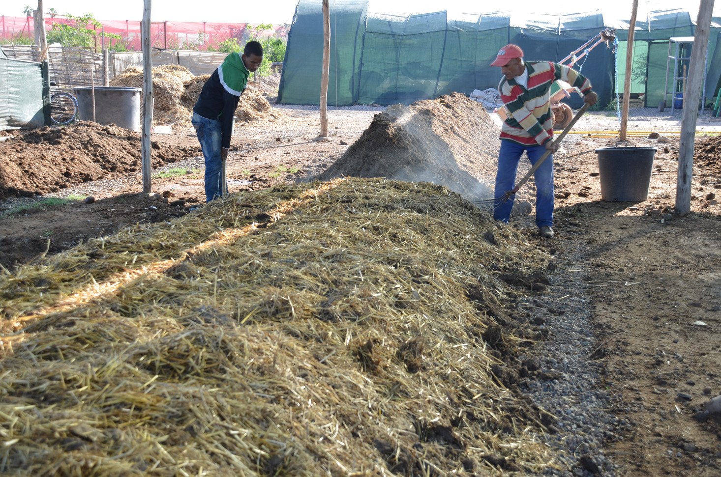 Compost Berkeley, en 18 jours ou pré-compostage pour lombriculture