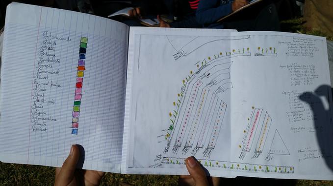 Jardin n°1 majorelle, plan implantation...