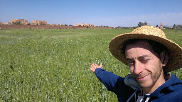 regeneration vegetale engrais vert, plante permaculture, autonomie alimentaire, regeneration des sols, permaculture design