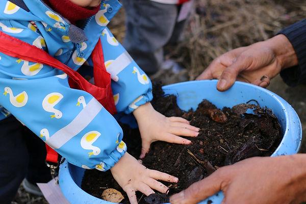 Permaculture urbaine,  formation pour les enseignants aux E3D EDD, transition écologique, écocitoyenneté , Education permaculture dans les écoles, autonomie alimentaire, regeneration des sols, jardin en plein désert, fabien tournan, regeneration des sols, regeneration vegetale, autonomie alimentaire, jardin partagés,