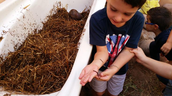 Ludique, donnée à manger nos déchets pour récupérer du compost...