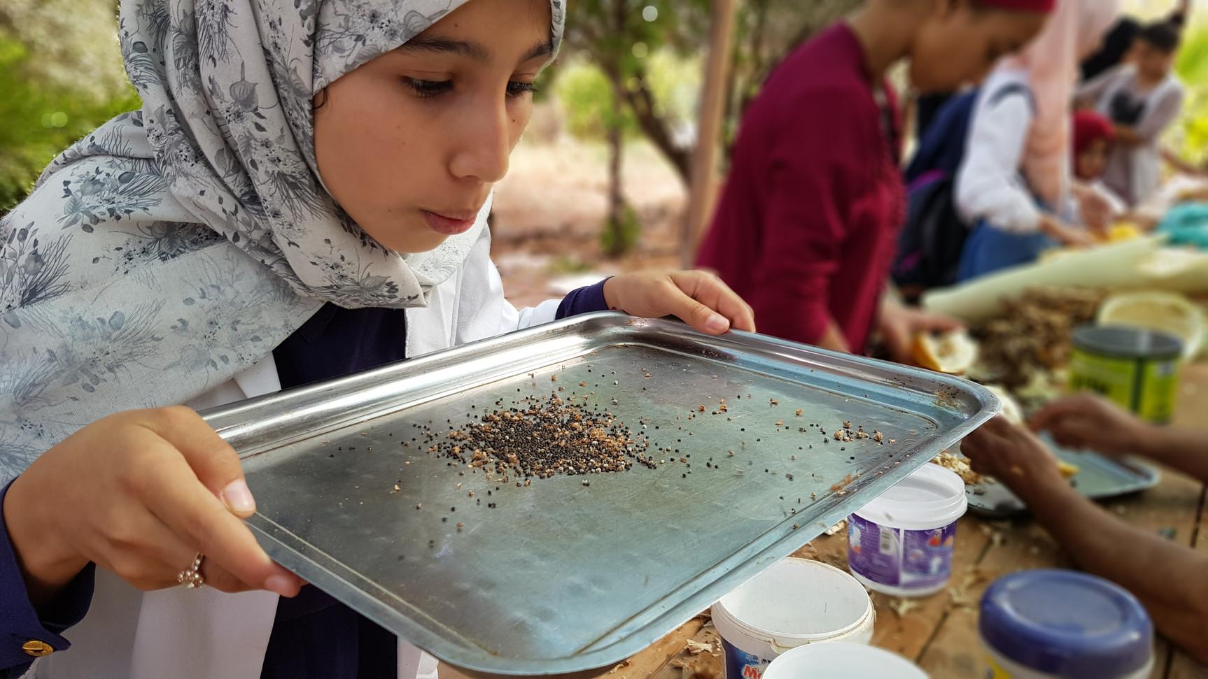 Nettoyage des semences....