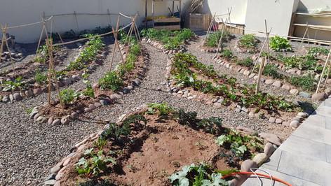 New garden montessori (11).jpg