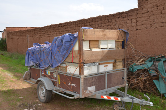 Transport des ruches...