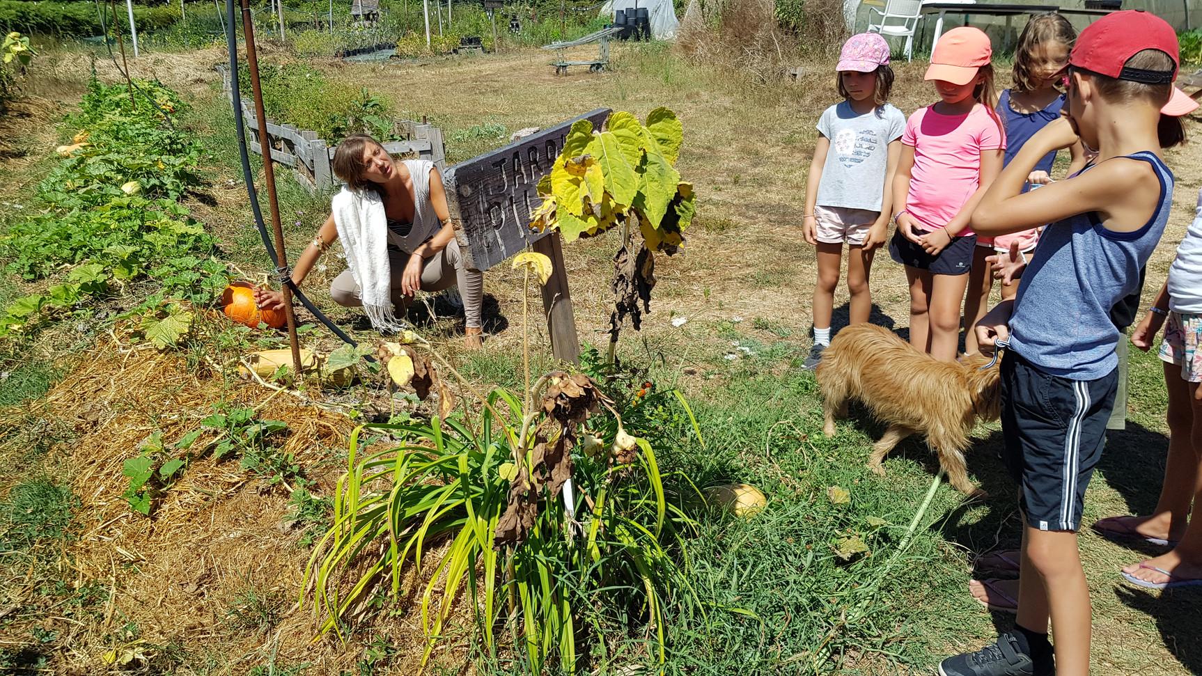 Visite du jardin et découverte des légumes de saison...