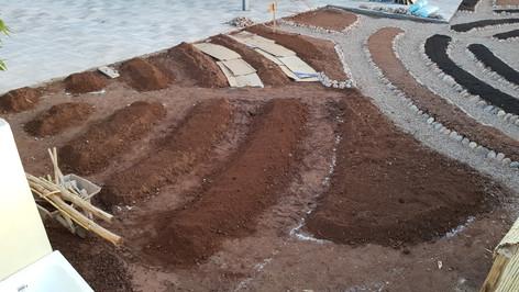 New garden montessori (4).jpg
