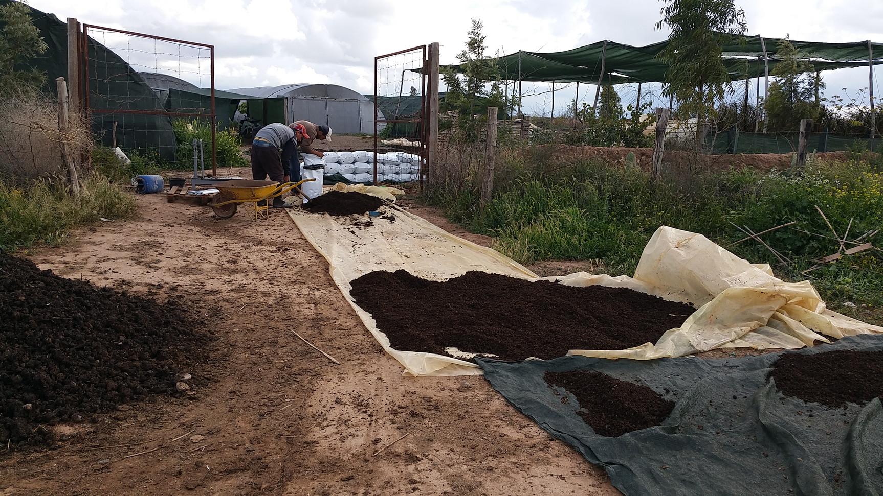 Tamissage conditionnement du compost
