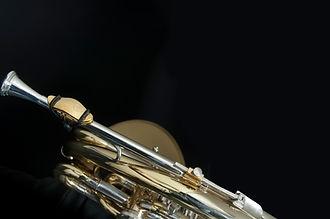 French horn 2.jpg