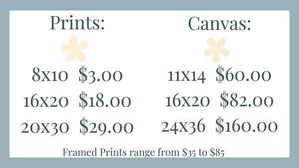 Prints_ 8x10 $10.00 16x20 $30.00 20x30 $