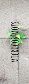 visuel microcos texte.png