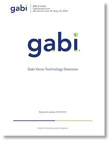 GabiVoiceTechOverviewCover.png