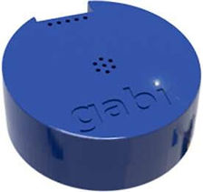 Gabi Royal Blue.jpg