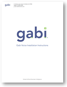 Gabi-Voice-Install-Book.png