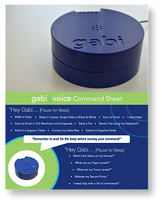 Voice Command Sheet Cover Page.png