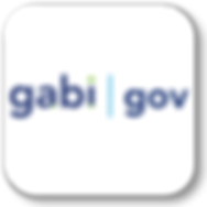 GabiGovApp.png