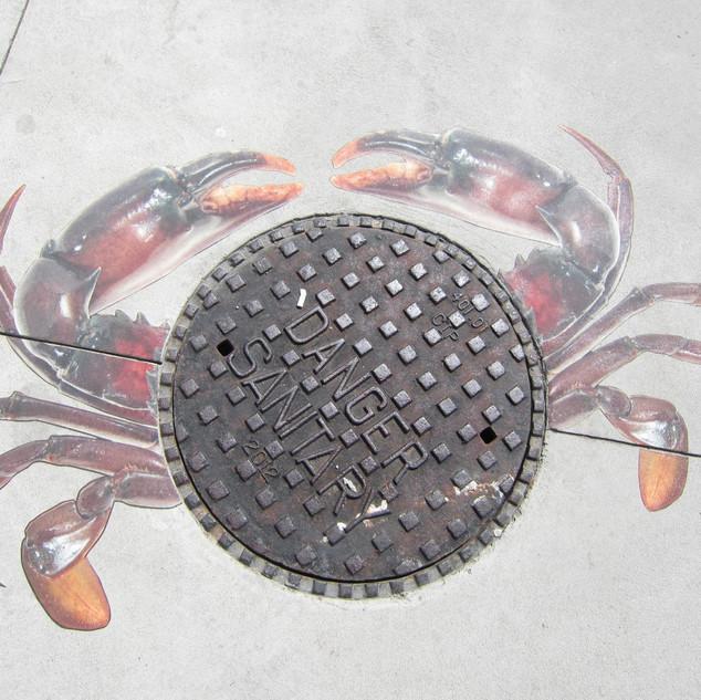 Crab Cover.jpg