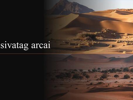 A sivatag arcai