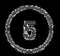 5 cerchiato sito.png