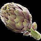 carciofo-principe-degli-ortaggi-2.png