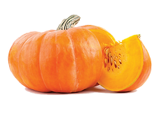 Zucca_opt.png