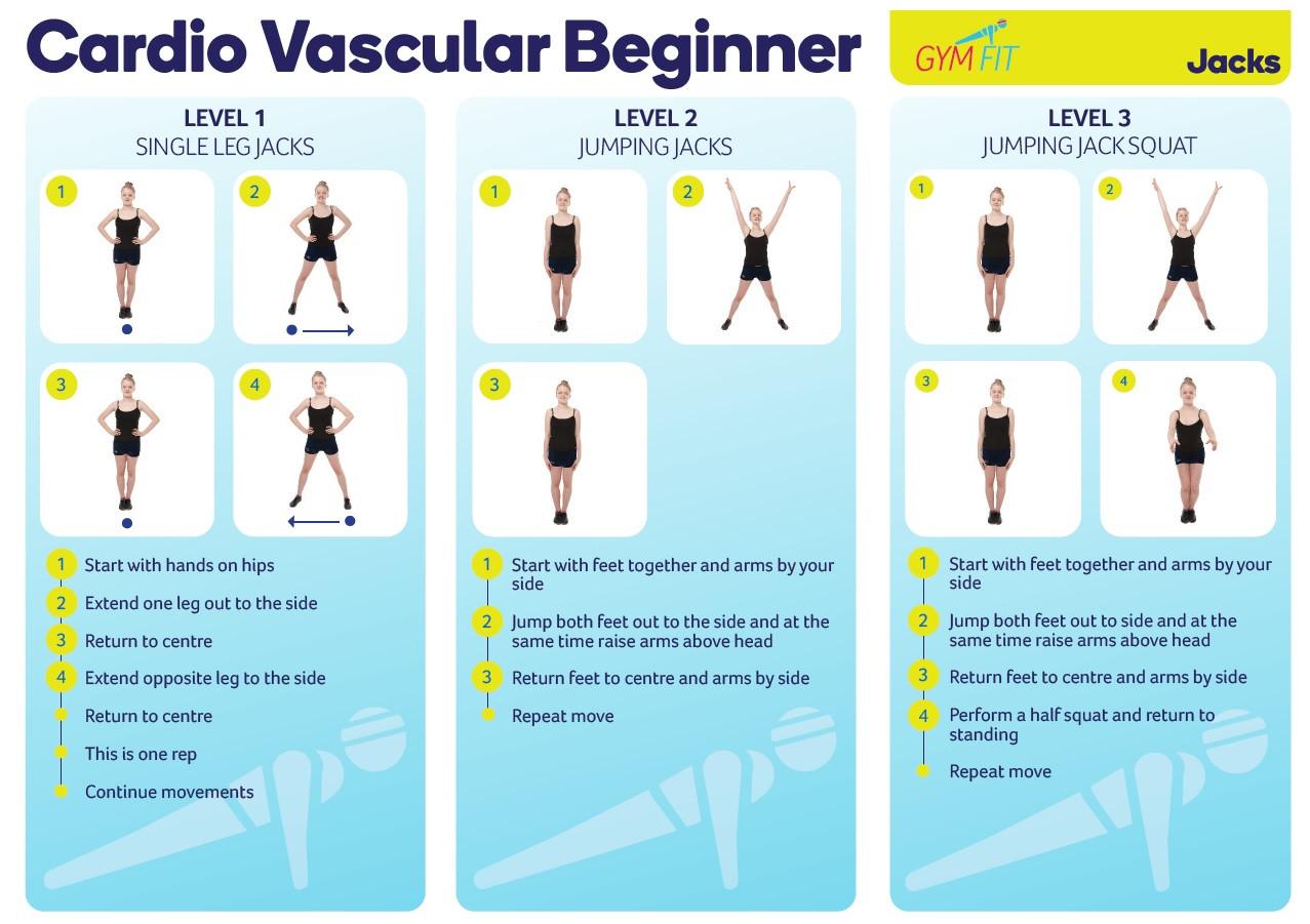 Cardio Vascular Beginner
