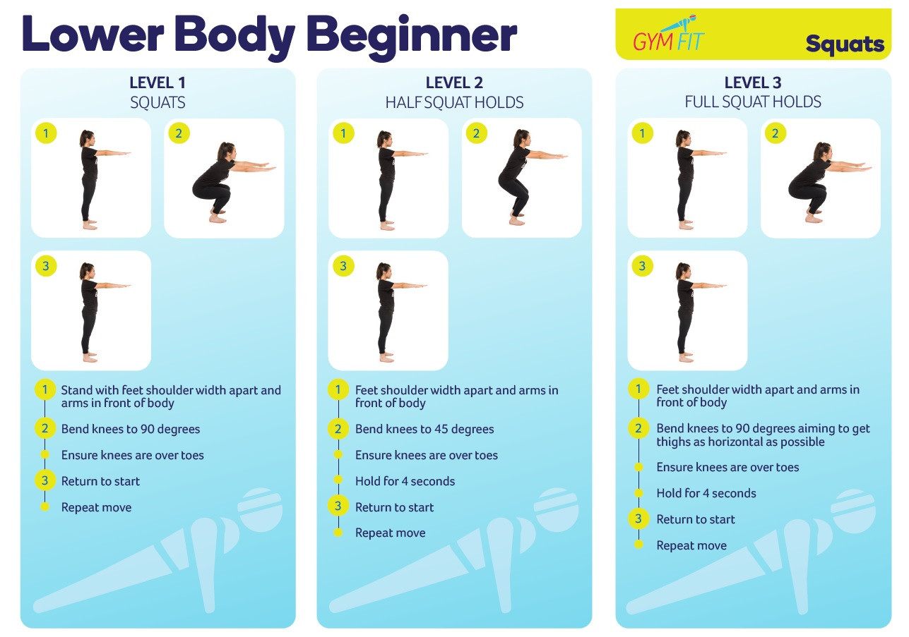Lower Body Beginner